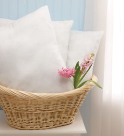 NON24390 Classic Disposable Pillows